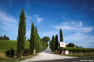 villa-nottola-viale-1-1