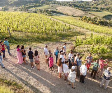 1 Tour del vino Nobile di Monepulciano 1