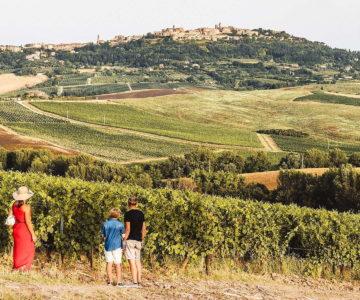 1. Tour del Vino Nobile di Montepulciano