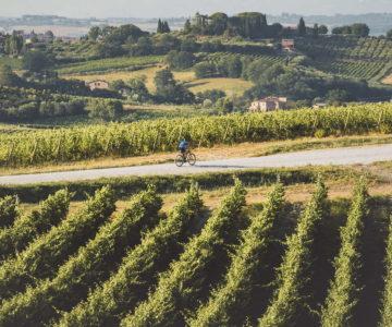 27. In bici sul sentiero del Nobile 1