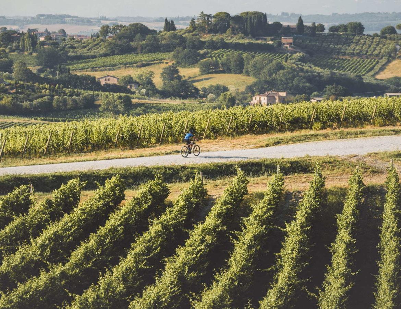 In bici sul sentiero del Nobile wine vino montepulciano