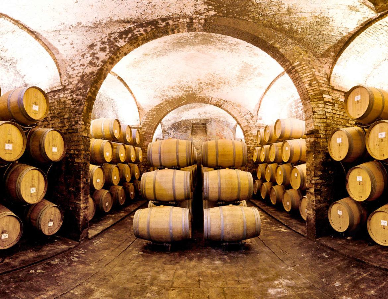 Wine lovers vino montepulciano