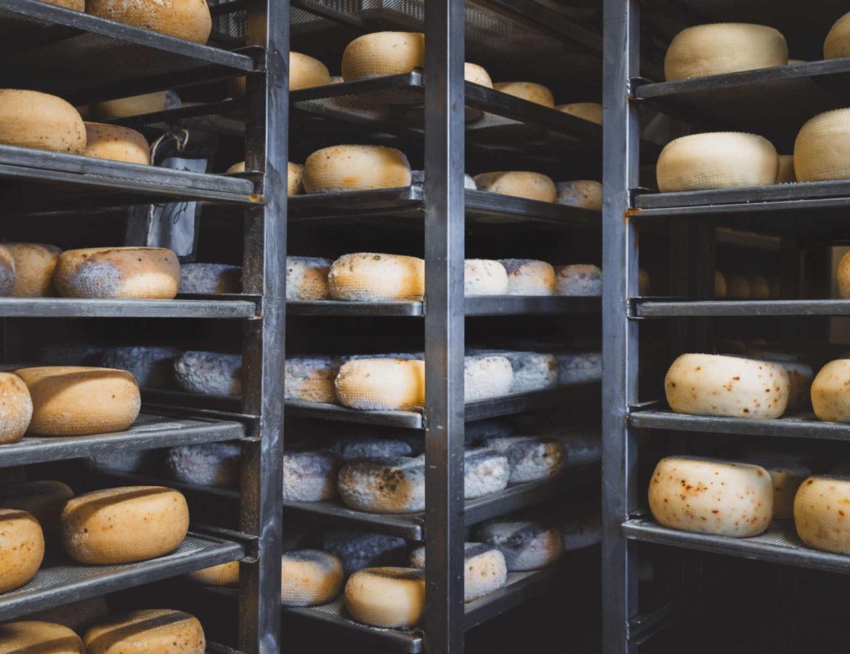 Gourmet Tour in Valdichiana Senese montepulciano