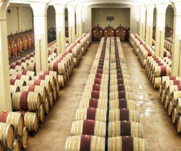 9. architettura del vino