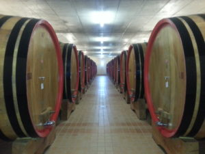 cellar_Lodola