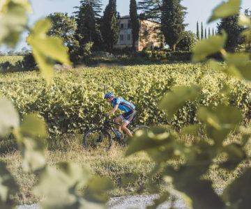 9. Tour del Vino in bici elettrica 1