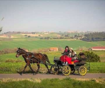 Tour in carrozza montepulciano