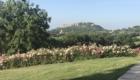 Parco Villa Trecci 10