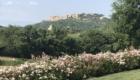 Parco Villa Trecci 9 1