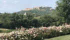 Parco Villa Trecci 9